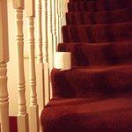 Rouleau wc retrouvé sur les escaliers