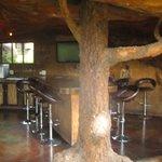 Bar in the Inkunzi Cave