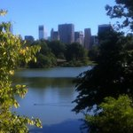 Central Park - view to the city on a morning run...
