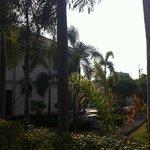 Nick's Resort