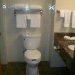 Drury Inn & Suites Hotel Bathroom