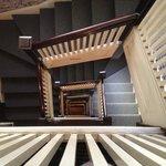 Vertigo @ Steinhart stairwell