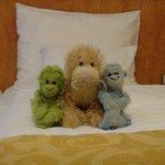 Winkin, Blinkin, & Nod enjoying the luxurious feather bedding