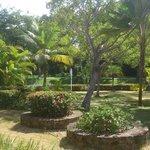des jardins de l'hotel