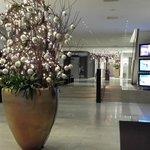 natale 2103 hall