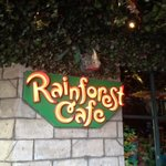 Rainforest Cafe의 사진