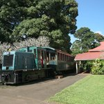 Plantation train ready to depart