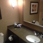 bathroom. Decent size, good counter space, but not a lot of room if there's more than one person