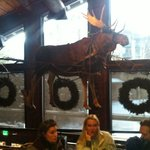 Love the moose hanging from the ceiling!