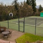 Private Tennis Ct . for your use