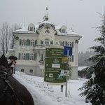 el camino de subida al Castillo Neuschwanstein