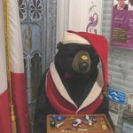 Xmas Bear in front hall