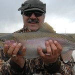 Big Rainbows are waiting for our anglers on guided fly fishing adventures.