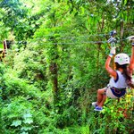 Family zip line experience... Enjoy with the kids! Ziplining between trees.