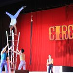 Nightly Entertainment - Circus show