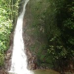 Hike from hotel to rainforest waterfall