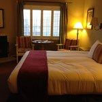 Room 113, wildrose building