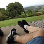 Hinterland views