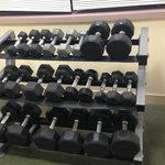 Weights up to 50 lbs.