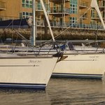 Commodore Corner at Gosport Marina