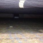 View beneath bed