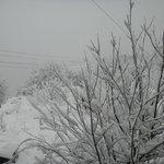 Billede af Cloud 9 Cottage