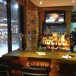 Sharky's Haeundae Strip - Our newest location on the main strip in Haeundae Beach