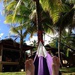 love the hammocks ...