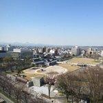 富山城址公園が見える