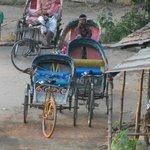 rickshaw madness