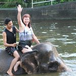 Mum swimming with the Elephants.