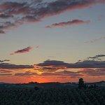 Sunset in Ponzano