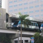 The Metromover weaves its way through the palm trees