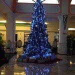 Christmas tree in the main lobby