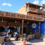 The place to look for: Big Blue, Dahab.