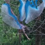 Enormous fairy caught in a spiders web next to sandpit