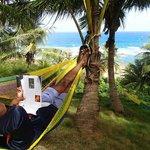hammocks at Sea U
