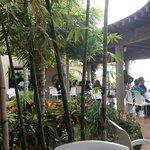 En Boca del Rio