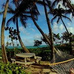 Hammocks looking out to the ocean