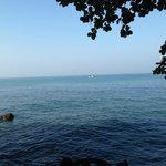 Warapura, The View