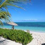 AOBV beach view