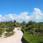 View from Jasmine & Hibiscus Villas