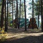 Cabin Courtyard