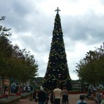 Christmas time in EPCOT!