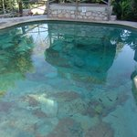 Pool to resemble a cenote