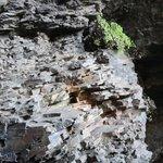 Una de las tantas formas que adopta la roca en su formación