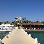 海からホテルを望む