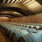 Primera fermentación en barrica para el cava gran reserva María del Mar de PERE VENTURA.
