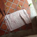 This towel was used by other guests. Very dirty and unclean.