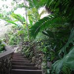 Beautiful landscaping and stair walkways